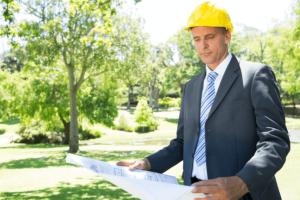 stein-tree-site-management