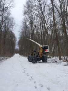 right of way clearing project in snow - Stein Tree