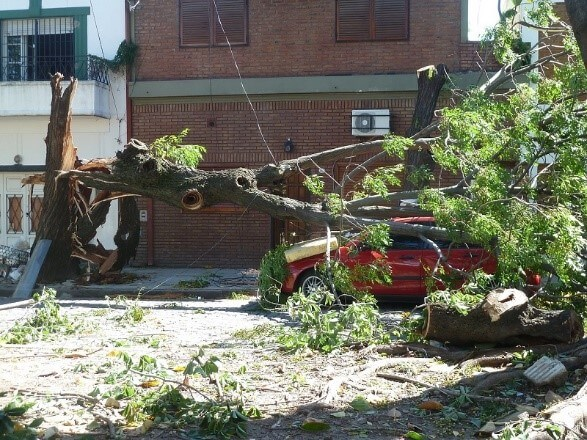 storm clean up Wilmington DE