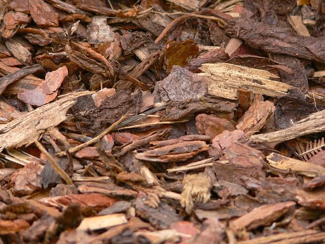 Up-close photo of mulch | tree care myths | Stein Tree Service