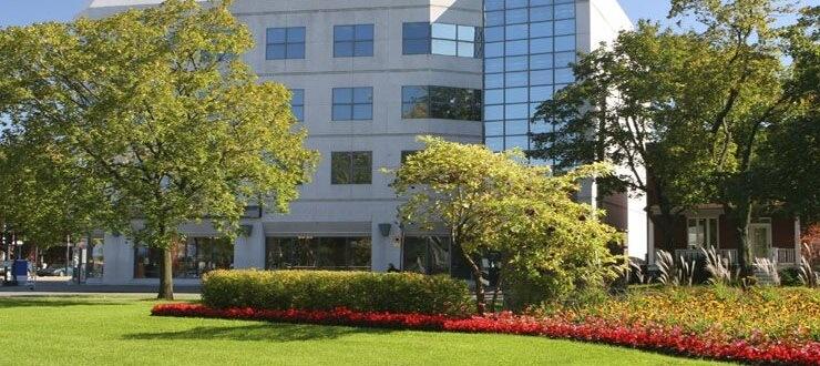 commercial-tree-service business landscape
