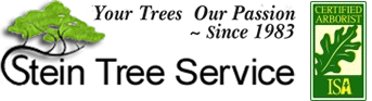"""""""Stein-Tree-WebLogo"""""""