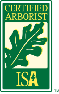 Certified arborist badge - What does an arborist do