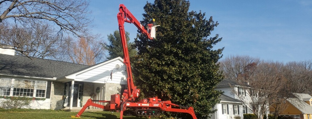 banner tree care specialist using spider lift to trim large tree - Stein Tree Service 1000