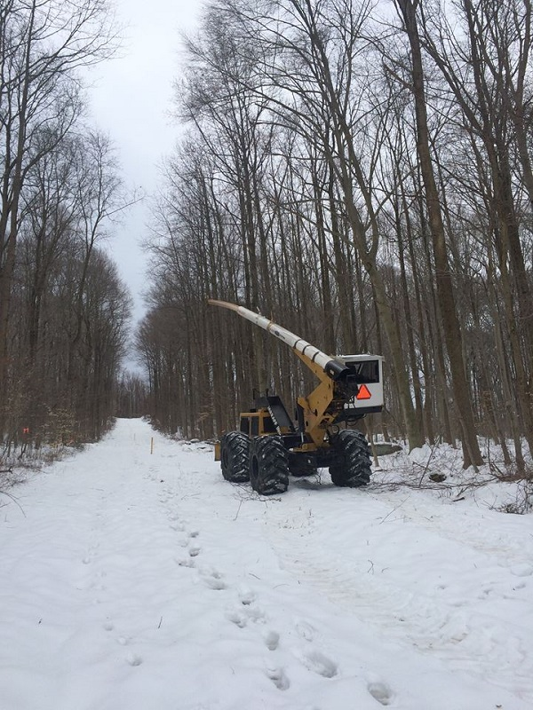 Right of way clearing project in snow | Right of Way Clearing | Stein Tree Service