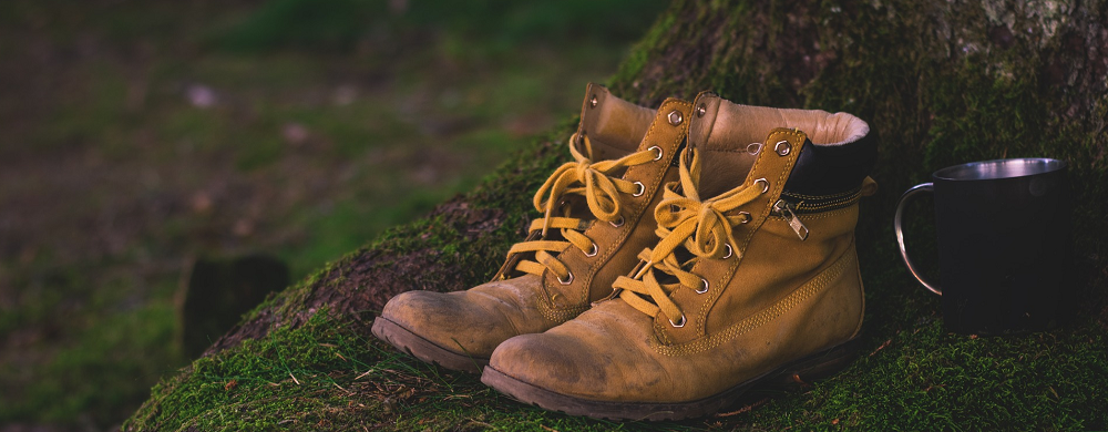 hiking shoes - Stein Tree Care Service cautions to beware of ticks