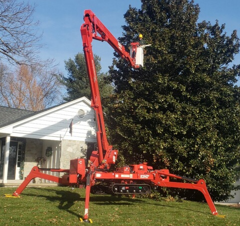 spider compact lift used for tree trimming and shrub pruning