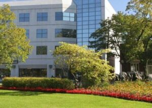 trees and landscaping in front of office building