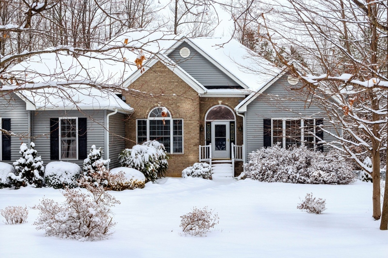 House and yard covered in snow with trees and shrubs | prepare trees for winter | Stein Tree Service