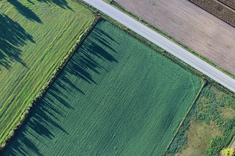 Aerial view of farm, what is a windbreak, Stein Tree Service